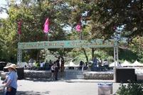 County fair 6