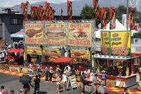 County fair 5